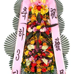 축하3단화환56