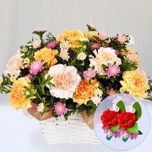 꽃향기(50)c